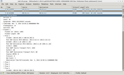 Screenshot - wireshark - nat-nfl-v9-create-translation