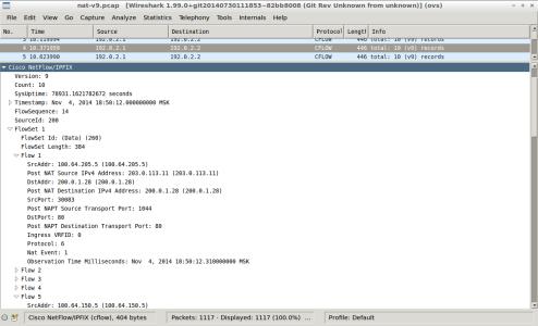 Screenshot - wireshark - nat-nfl-v9-create-translation