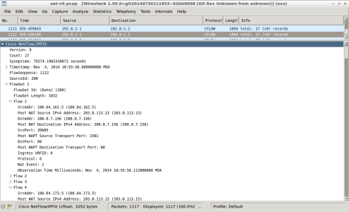 Screenshot - wireshark - nat-nfl-v9-delete-translation