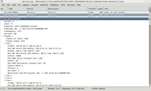 Screenshot - wireshark - nat-nfl-v9-delete-translation